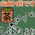 shibata only