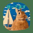 ウサギのくーちゃんスタンプ