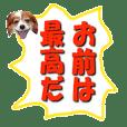 Love in Speech Sticker