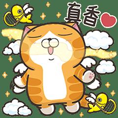 白爛貓☆大貼圖☆初登場