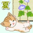 ちび猫の夏