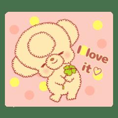 Toy Poodle Kotsubu_English edition 3