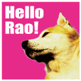 Rao is a Japanese dog.