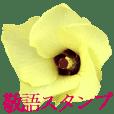 KiKi's Flower garden 3