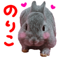 rabbit love noriko sticker