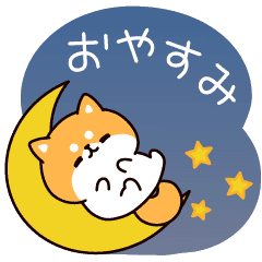 Answer Shiba Dog (Effect Sticker)