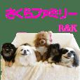 Sakura Family R & K