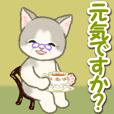 優しいおばあちゃん猫ちゃん