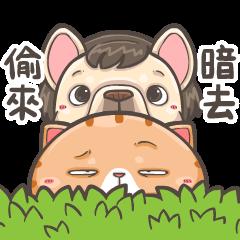 法鬥皮古&喵皇米香-兄弟情誼(第13彈)