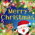 LINEスタンプランキング(StampDB) | 毎年使える大人のクリスマスと冬の日常