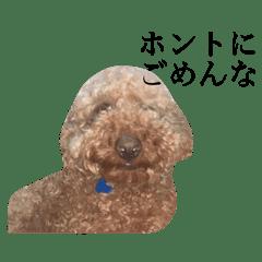 うちの犬の使えるスタンプ