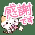 小さい三毛猫【ていねいな挨拶】