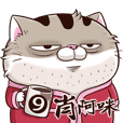 fat cat Ami 9