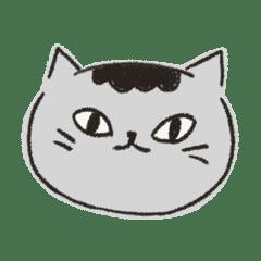 貓貓虎虎2
