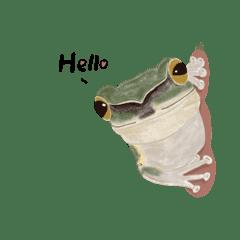 蛙是亞力山大
