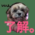 i am monja !もんじゃの日常 第2弾