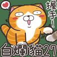 ランラン猫 27 (台湾版)