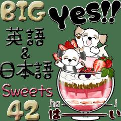 【Big】シーズー42『英語&日本語』Sweets
