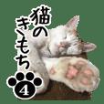NEKO no kimochi 4 cat