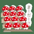 The mushroom!!