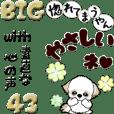 【Big】シーズー43『素直な心の声と共に』