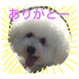 dog's one phrase message sticker part1