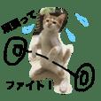 猫のひとことスタンプ part1