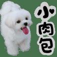 小肉包&摩卡搗蛋日記簿vol.2