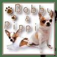 Bobby& Pippi