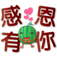 Cute Watermelon-practical daily