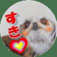 Owl @ Sticker
