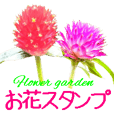kikimama Flower Sticker
