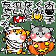 可愛いにゃんこ達【14】小さな秋