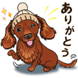 A sticker willingly. Dachshund (Red) 2