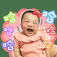 Xiao Jie daily