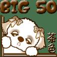 【Big】シーズー犬 50『茶色』
