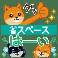 柴犬「ムサシ」31 省スペース