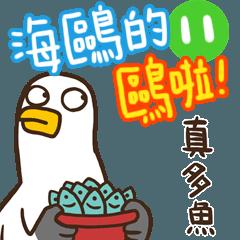 海鷗的鷗啦!11真多魚