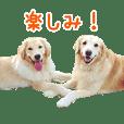 ノエル&ジョイ②