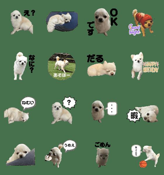 「僕の犬の福ちゃん」のLINEスタンプ一覧