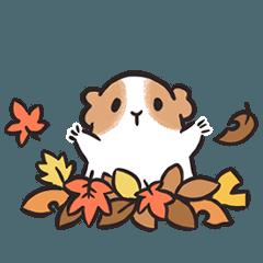 Yuru-Guinea pig & Autumn tradition