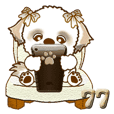シーズー犬 77『茶色』