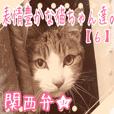 【関西弁】表情豊かな猫ちゃん達。6