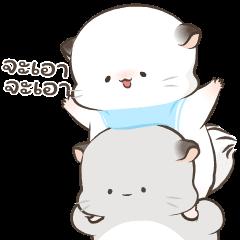 Simao & Bamao ชินชิลลานุ่มนิ่ม 4
