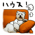 Mochima's dog Sticker