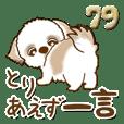 シーズー犬 79『まずは一言』