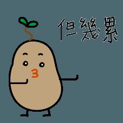 Potato boy (馬鈴薯小子)