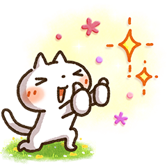 DoCLASSE×Simple white cat