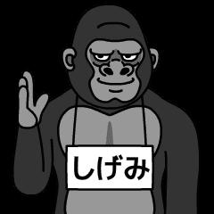 shigemi is gorilla