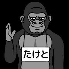 taketo is gorilla